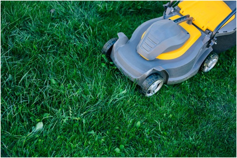 What tools do you require for mowing your lawn